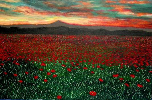 Sunset over poppies field by Marie-Line Vasseur