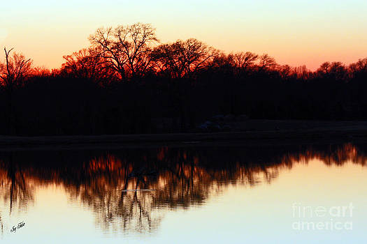 Sunset Strip by Joy Tudor