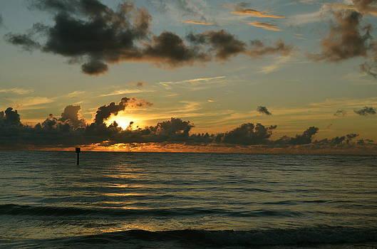 Sunsets by Susan McNamara
