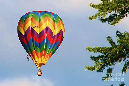 Sunshine on Balloon by Christina A Pacillo