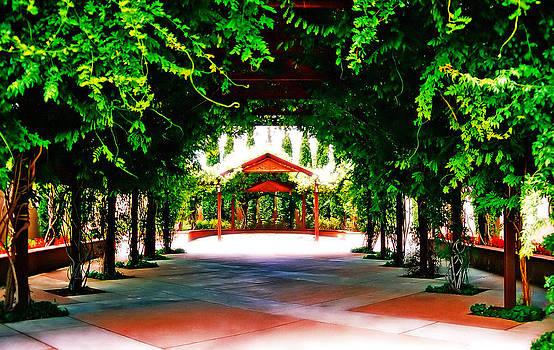 Surreal Garden by Charles Benavidez