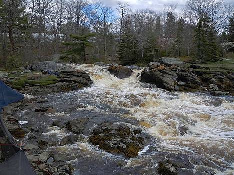Surry Falls by Francine Frank