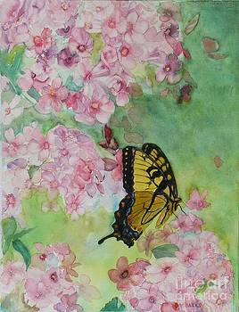 Swallowtail by Holly Banks
