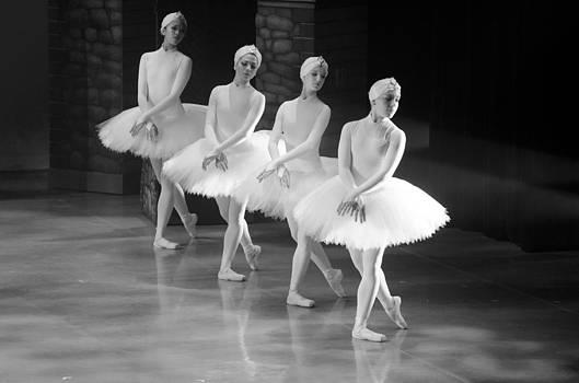 Swan Lake 7 by Cheryl Cencich