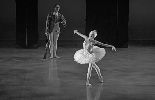 Swan Lake Ballet 2 by Cheryl Cencich