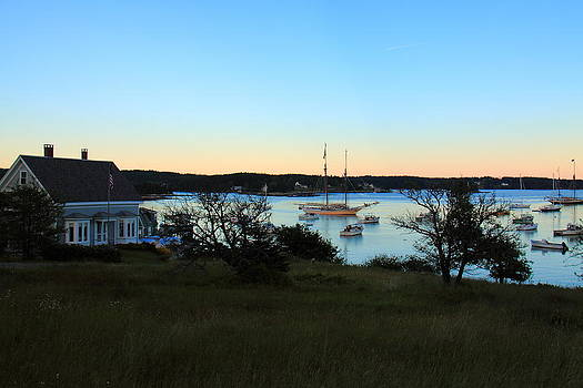 Swans Island by Doug Mills