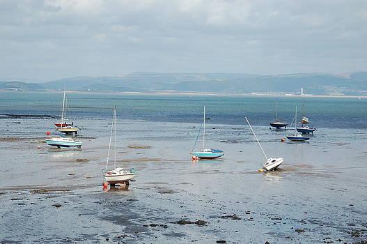 Tam Ryan - Swansea Bay Sailboats