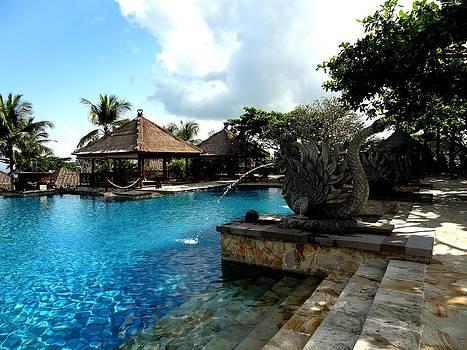 Xafira Mendonsa - Swimming Pool