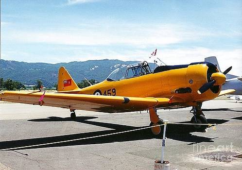 T-6 Texan by Woody Wilson