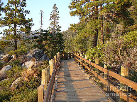 Tahoe Bridge by Silvie Kendall