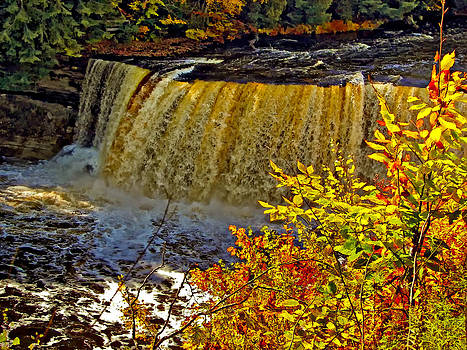 Steve Harrington - Tahquamenon Falls