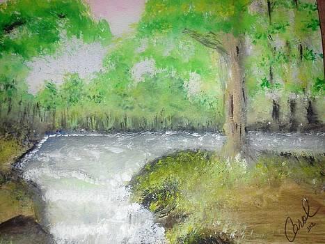 Take Me to the River by Carol Duarte
