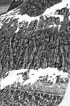 Darcy Michaelchuk - Taku Cliff and Glacier