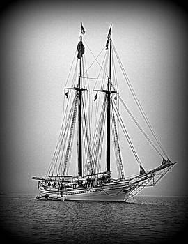 Tall Ship Heritage by Doug Mills