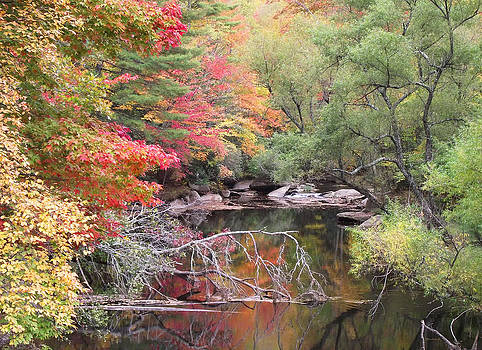 Tanasee Creek in the Fall by Duane McCullough