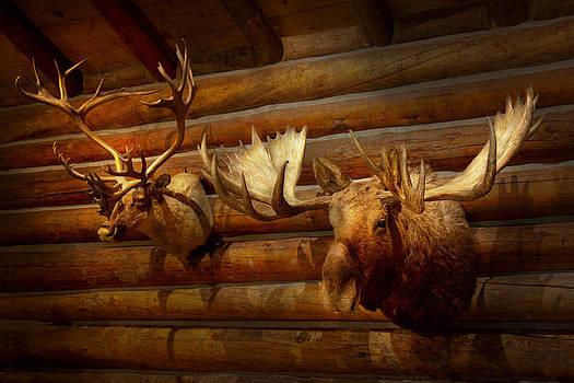 Mike Savad - Taxidermy - The hunting lodge