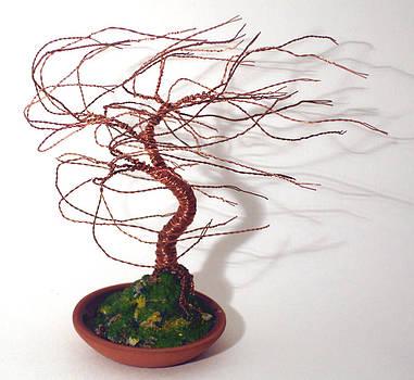 Terra Cotta Wind Swept - Wire Tree by Sal Villano