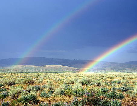 Marty Koch - Teton Rainbow