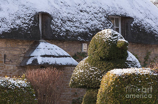 Thatched Cottage by Andrew  Michael