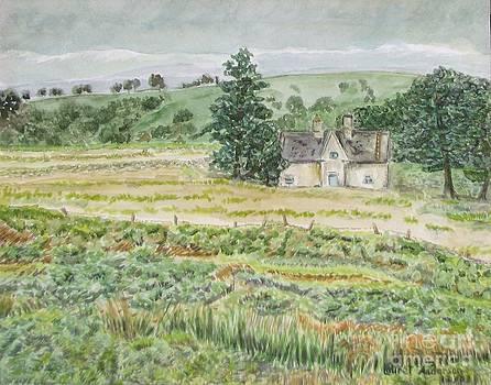 Thatched Cottage Ireland by Laurel Anderson-McCallum