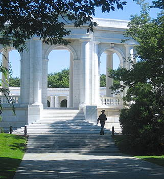 The Atrium at Arlington by Claire Pridgeon