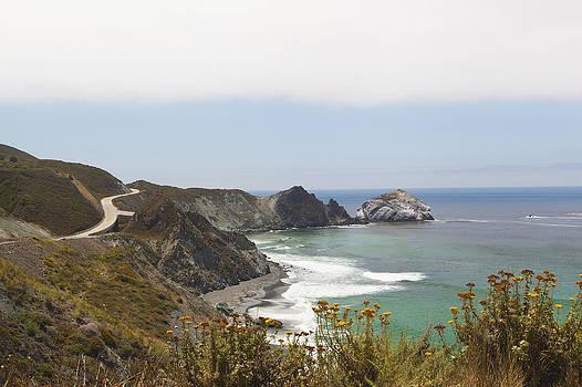 The Big Sur Coastline On The Pacific by Douglas Orton