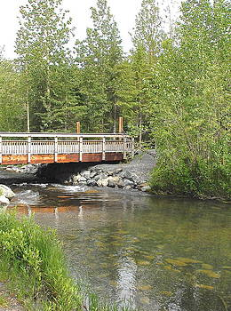 The Bridge by Claire Pridgeon