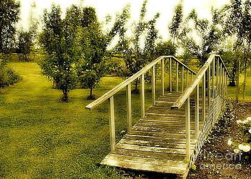 The Bridge by John Krakora