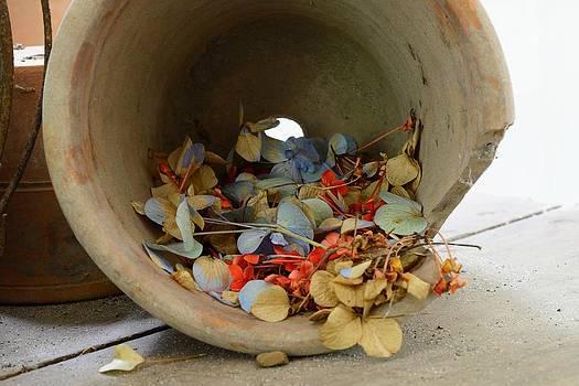 Bourbon  Street - the Broken Pot