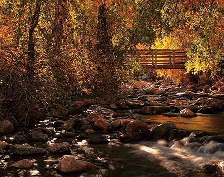 The Color of Autumn by Gene Praag