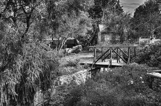 The cottage Garden Bridge  by Imagevixen Photography