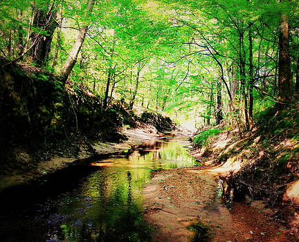 The Creek 1 by Hannah Miller