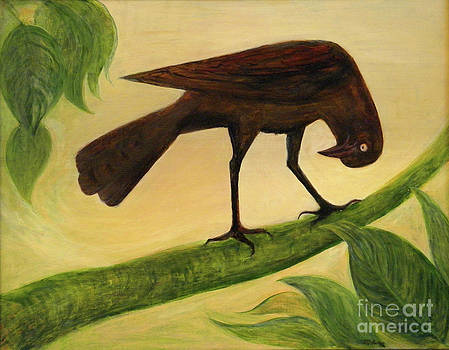 The Curious Blackbird by Maureen Ida Farley
