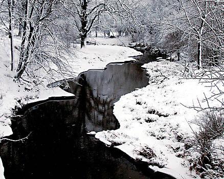 The deep and snowy creek by Kimberleigh Ladd