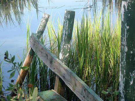 The Dock by Juliana  Blessington
