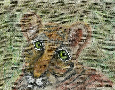 The Eyes Have It by Joy Braverman