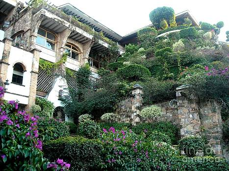 The Facade - Climbing Plants by Liliana Ducoure