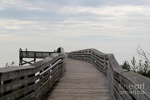 The Fishing Pier by Theresa Willingham