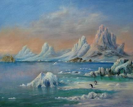 The Frozen South by Rita Palm
