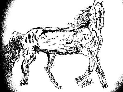 The Gallop by Rocky Malhotra
