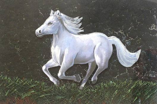 The galloping horse- by Rejeena Niaz