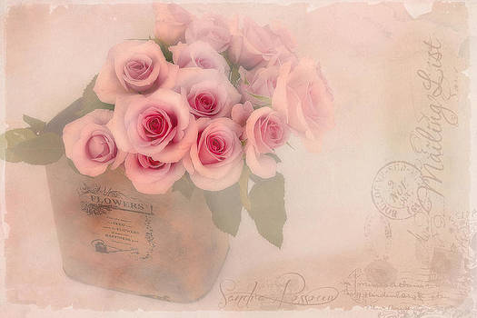 The Gift of Love  by Sandra Rossouw