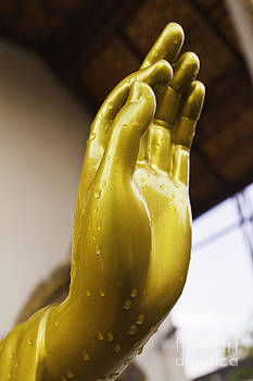 The golden Buddha's hand by Wittaya Uengsuwanpanich