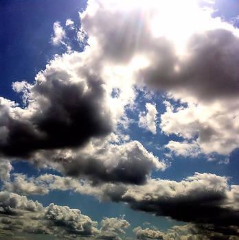 The Heavens by Karen Conine
