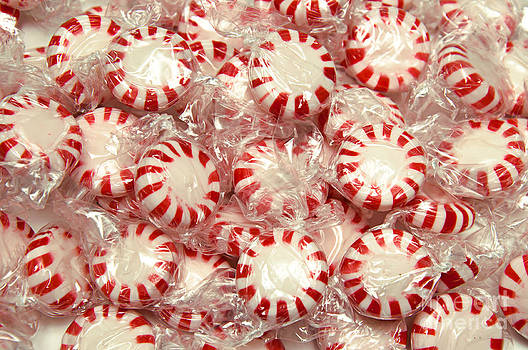 Andee Design - The Land Of Peppermint Candy