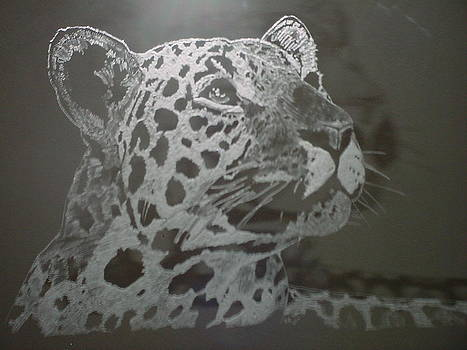 The Leopard by Robin Hewitt