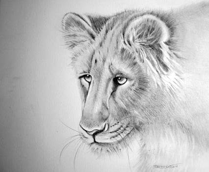The Lioness by Barbra Joan