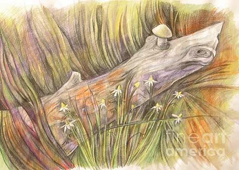 Anna  Duyunova - The log