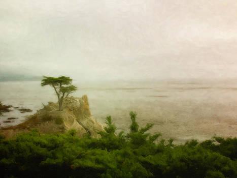 Venura Herath - The Lone Tree