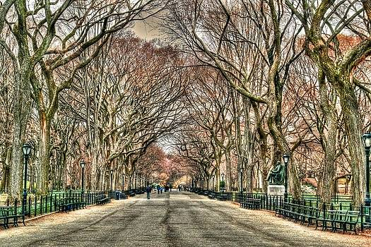The Mall at Central Park by Mike Berry
